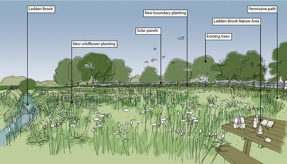 Larks Green Solar farm sketch